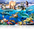 780 Oceans of life