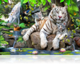 785 White Tigers of Bengal
