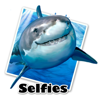 Great White Selfie